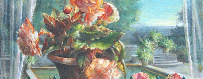 Begonias, côté jardin